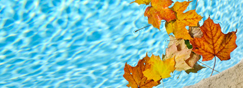 Ways to Enjoy Your Pool During the Fall