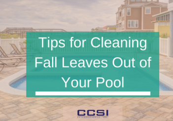 Tips for cleaning fall leaves out of your pool